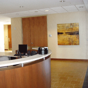 Commercial Art Installation Services